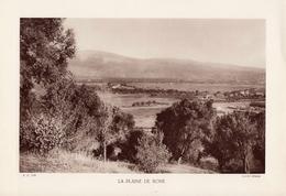 ALGERIE, LA PLAINE DE BONE, Planche Densité = 200g, Format 20 X 29 Cm, (OFALAC) - Géographie