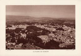 ALGERIE, LA PLAINE DE TLEMCEN, Planche Densité = 200g, Format 20 X 29 Cm, (Moreau) - Géographie