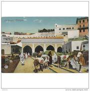 TGRTPA5932CPA-LFT7D1820TAD.Maroc .Morocco.TARJETA DE TANGER.Edificios,personas,aduana,animales,BURROS.LE ADOUANE.TANGER - Aduana