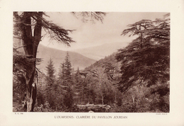 ALGERIE, L'OUARSENIS: CLAIRIERE DU PAVILLON JOURDAN, Planche Densité = 200g, Format 20 X 29 Cm, (OFALAC) - Géographie