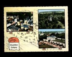45 - CHATILLON-COLIGNY - Multi Vues - Chatillon Coligny