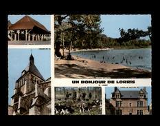 45 - LORRIS - Multi Vues - France