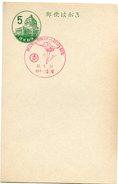 18213 Japan, Special Postmark 1957 Ice-skating  Patinage Sur Glace - Japan