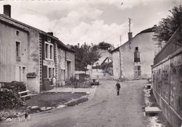 CPSM   ROOCOURT 52   Rue De L'Orme - Autres Communes