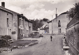 CPSM   ROOCOURT 52   Rue De L'Orme - France