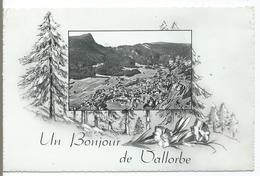 Un Bonjour De VALLORBE - VD Vaud