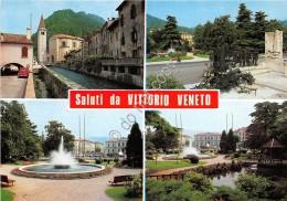 Cartolina - Vittorio Veneto Vedutine Foto Ghedina - Treviso