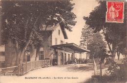 ¤¤  -  BLAMONT  - La Gare Et Les Quais  -  ¤¤ - Blamont