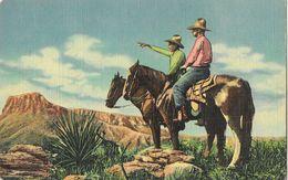 Cowboys Of The Southwest - C.T. Art-colortone Post Card - Carte N° 29 Non Circulée - Etats-Unis