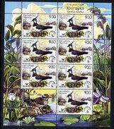 BELARUS 2006 Bird Of The Year Sheetlet MNH / **.  Michel 617 Kb - Belarus
