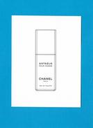 Cartes Parfumées Carte ANTAEUS  POUR HOMME De CHANEL - Cartes Parfumées