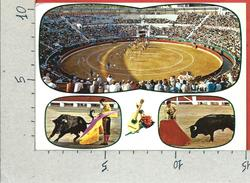 CARTOLINA VG SPAGNA - Plaza De Toros - Arena - Tauromachia - Corrida - 10 X 15 - ANN. 1977 - Corrida
