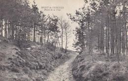 Mont De L'enclus, Route De La Tour (pk33529) - Mont-de-l'Enclus