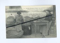 CPA-Un Atelier D'énoisage En Périgord- (noix )  -En Dordogne Une Des Industrie Les Plus Prospères - France