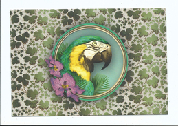 Accessoire De Mode Vintage -arra Plume Orchidée   - Cpm 9 /14 Cm Ed Les Cakes De Bertrand - Moda