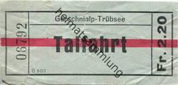 Schweiz - Gerschnialp Trübsee - Talfahrt Fahrschein - Bahn