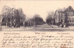 Wien-Anastasius Grüngasse-Villa Sonnental. - Non Classificati