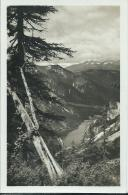 AK 0615  Lago Di Braies ( Pragser Wildsee ) Sulla Strada Al Rifugio La Porta / Veduta Verso I Monti Aurini 1940-50 - Bolzano (Bozen)