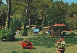 10380) RONCHI POVEROMO GIARDINO VIAGGIATA 1968 CIRCA INSOLITA - Massa
