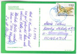 CP1302 Dominican Puerto Plata Nice Stamp Mi 1685 Lizard Cyclura Cornuta - Dominikanische Rep.
