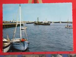 Cartes Postales > France > [14] Calvados > Port-en-Bessin-Huppain, L'avant Port - Non Circulé - Port-en-Bessin-Huppain