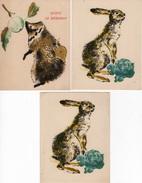 Ref5632 Carte Postale X 3 - Quipic Le Hérisson Et Froux Le Lièvre - Album Du Père Castor (BP) - Postcards