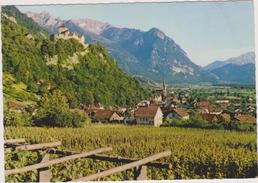 LIECHTENSTEIN,OBERLAND,VADUZ,terre Agricole - Liechtenstein