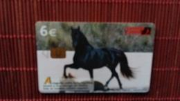 Horse Phonecard Horse Used - Horses