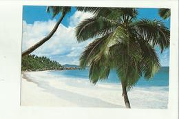 136569 PETITE ANSE LA DIGUE SEYCHELLES - Seychelles