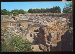 CPM Italie Sicile SIRACUSA Anfiteatro Romano - Siracusa