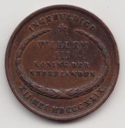 @Y@   Willem 3    Inhuldigingspenning  1849   (4588) - Royal/Of Nobility