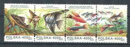 192 POLOGNE 1994 - Yvert 3297/300 - Poisson Acquarium -  Neuf ** (MNH) Sans Trace De Charniere - Nuovi