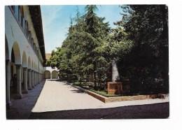 OSPEDALE MILITARE DI UDINE VIAGGIATA  FG - Udine