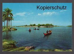 ÄLTERE POSTKARTE GARDEN OF EDEN AT GURNAH Tigris Euphrat Iraq Cpa AK Postcard Ansichtskarte - Iraq
