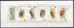 BELGIQUE 1996 Nº C-2630 USADO - Carnet 1953-....