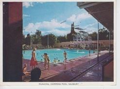 CPSM Salisbury (Hararé) - Municipal Swimming Pool (avec Jolie Animation) - Zimbabwe