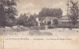 Les Environs De Bruxelles, Auderghem, Les Etangs De Rouge Cloïtre (pk33588) - Auderghem - Oudergem
