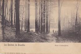 Les Environs De Bruxelles, Foret D' Auderghem (pk33592) - Auderghem - Oudergem