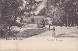 Environs De Bruxelles, Un Chemin A Tervueren (pk33602) - Tervuren
