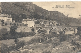 91. GORGES DU TARN . LES VIGNES - VUE GENERALE . NON ECRITE - Gorges Du Tarn