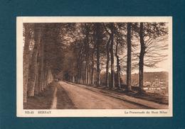 27 - BERNAY - La Promenade Du Mont Milon - Bernay