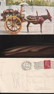 10439) CARRETTO SICILIANO TRASPORTO ACQUA O VINO VIAGGIATA 1929 INSOLITA BELLISSIMA - Unclassified