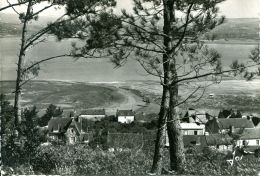 N°32382 GF-cpsm Landevennec -le Bourg Blotti Dans La Verdure- - Landévennec