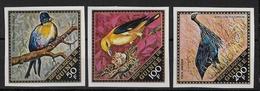 GUINEE - YVERT N° POSTE AERIENNE 26/28 NON DENTELES ** - OISEAUX - BIRDS - Guinea (1958-...)