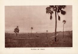 MADAGASCAR, PLATEAU DE L'ISALO, Planche Densité = 200g, Format 20 X 29 Cm, (Serv. Photo. Madagascar) - Géographie