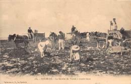 17 - CHARENTE MARITIME - Ile De Ré / La Récolte Du Varech à Marée Basse - Beau Cliché Animé - Ile De Ré
