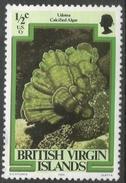 British Virgin Islands. 1979 Marine Life. ½c MH. SG 417 - British Virgin Islands