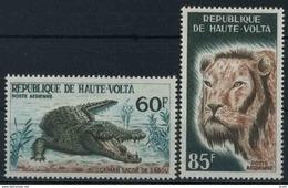 1965 Alto Volta, Fauna , Serie Completa Nuova (**) - Alto Volta (1958-1984)