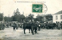 N°33828 -cpa Nort Sur Erdre -le Champ De Foire- - Fiere