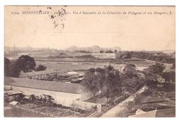 MONTPELLIER - 2 ème Génie. Vue D'ensemble De La Citadelle Du Polygone Et Des Hangars - Montpellier